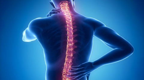 spinal-injuries